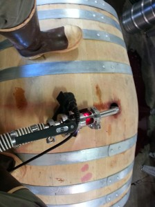 Puncheons are big barrels - 500 liters (132 gallons). I choose to stand on top of them while racking. Check out the pretty magenta Grenache illuminated by my torch.
